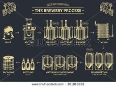 Vector beer infographics with illustrations of brewery process. Brewery… – Angela Evans Vector beer infographics with illustrations of brewery process. Brewery… Vector beer infographics with illustrations of brewery process. Home Brewery, Beer Brewery, Beer Bar, Brewery Interior, Beer Infographic, Make Beer At Home, Brewery Design, Restaurant Design, Craft Bier
