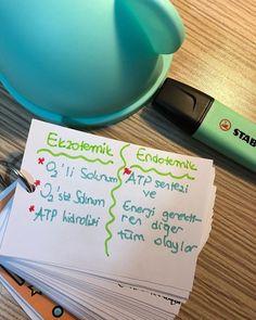 Mini not biyoloji -2 ❤️  #2018tayfa #2019tayfa #2018tayfadersçalışıyor #yks #yks2018 #yks2019tayfa #tyt  #ykstayfa #rakibincalisiyor #hırs #basari  #başarıyagidenyol Learn Turkish, Study Habits, School Notes, Study Inspiration, College Students, Biology, Chemistry, I Am Awesome, Medicine