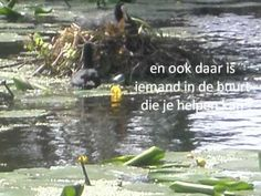 AFSCHEIDSLIED MET TEKST GROEP 8 2012