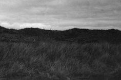 desolate landscape - Cerca con Google