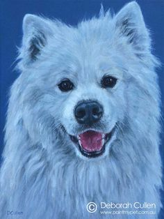 """DOG PORTRAIT Wally – White Samoyed Acrylic on Canvas, x x Private Commission, Lucy and Matt (Northcote, VIC) """"Wally still remains 'puppy like' at two with a cheeky personality, but loves affection. He is the most friendly dog you'll Samoyed Dogs, Dog Paintings, Dog Portraits, My Animal, Dog Friends, Husky, Puppies, Canvas Ideas, Pets"""