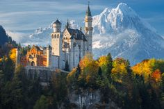 Image 1 of 13 from gallery of AD Classics: Neuschwanstein Castle / Eduard Riedel. Courtesy of Shutterstock user Naumenko Aleksandr
