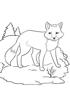 cool Winter Coloring Page: Artic Fox and Song | Kiboomu Worksheets Euro Media Check more at http://ukreuromedia.com/en/pin/37694/