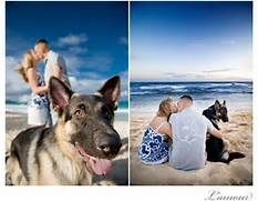 family photo ideas with pets - love the dog looking back