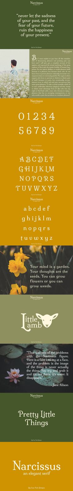 Narcissus is an elegant serif font that can be used for a wide range of projects such as logo designs, branding, wedding invitations, social media posts, and so Upper And Lowercase Letters, Letters And Numbers, Best Serif Fonts, Wedding Invitations, Logo Design, Elegant, Uppercase And Lowercase Letters, Classy, Wedding Invitation Cards