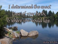I determined the exact time of your birth, and where you would live. Father's Love Letter, Fathers, Birth, Acting, Lettering, Live, Reading, Outdoor, Dads