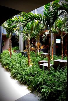 Jardim do Chef, por Marina Pimentel para Casa Cor Brasília 2017