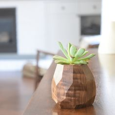 This succulent, air plant, or small cactus planter is handmade from solid American Walnut, sanded, buffed, and waxed. The interior has been waterproofed so you can plant directly. Learn more about Fer