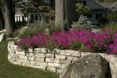 Dry laid stone retaining wall; maybe colored flowers that even overhang above and nothing but grass below