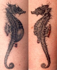 Looking for unique Mon Henk Tattoos?  Seahorse