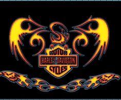 View Of Harley Davidson Fire Wallpaper Wallpapers : Hd Car Wallpapers Harley Davidson Decals, Harley Davidson Quotes, Harley Davidson Merchandise, Harley Davidson Tattoos, Harley Davidson Pictures, Harley Davidson Wallpaper, Harley Bikes, Harley Davidson Motorcycles, Davidson Bike