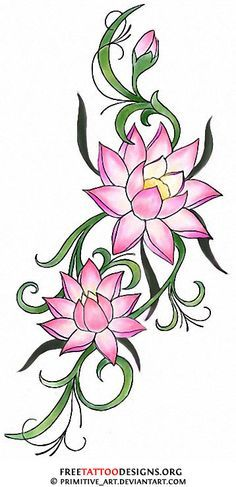 water lily drawings for tattoos 66O3oSma