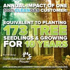 Did you know that one 100% cleangas customer offsets 14,400 lbs of carbon pollution annually - the same environmental impact as planting 173 trees and growing them for 10 years!  Share this information with your friends so they know just how beneficial becoming a North American Power customer can be, not only for adding green to their pockets, but going green for the future.