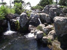 Mac Mac pools - Gold diggers claimed sections of the river to seek their wealth. The fourth South African president, Thomas Francolis Burgers (presidency 1871-1877) apparently named the area of this river Mac Mac as a large majority of the people he met were of Scottish origin.