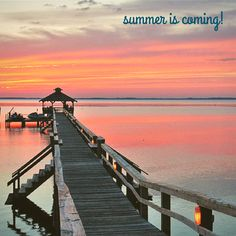 When winter days are cold and grey, just remember that summer is already on its way back! http://www.visitcurrituck.com/