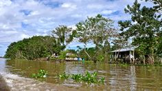 Amazonas, Colombia. Country Roads, House Styles, Scenery, Fotografia, Earth, Places