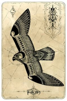 Falcon collaboration by David Hale & Kris D Body Art Tattoos, Sleeve Tattoos, Fox Tattoos, Script Tattoos, Arabic Tattoos, Dragon Tattoos, Flower Tattoos, Hawk Tattoo, Raven Tattoo