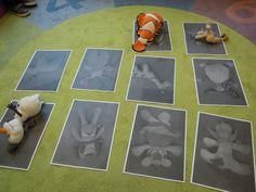 knuffels herkennen Autism Activities, Activities For Kids, Children With Autism, Age 3, 3 D, Teaching, Creative, Baby, Plays