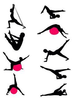 [필라테스] : 필라테스의 원리는 몸의 중심(Core=Center of the Body)을 강화시켜 균형 잡힌 신체를 만드는 것이다. 일명 파워 하우스라 하여 배와 등,허리,엉덩이,허벅지에 있는 근육집단을 몸통과 골반,어깨 전체와 함께 컨트롤하는 것이다.