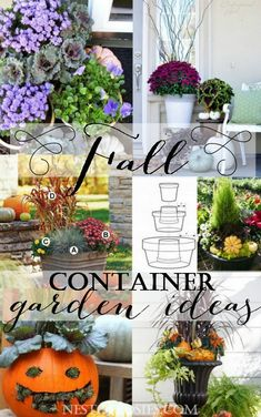 Fall Container Garden Ideas.  How to create the perfect thriller,filler and spiller effect in your planters