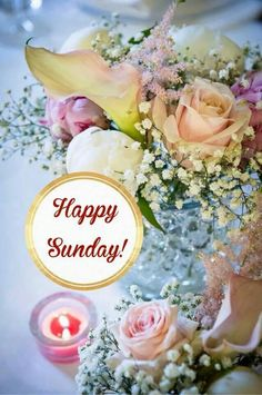 Happy Sunday! ♥