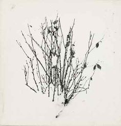 Harry Callahan. Study, 1948. Wish I could find this larger, but hopefully you get the right idea.