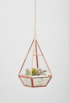 Joy Store-Rose Gold Terrarium