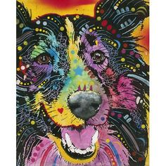 East Urban Home 'Smiling Collie' Graphic Art Print Format: