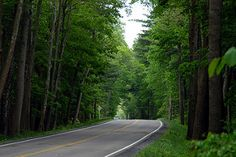 George Washington National Forest (1) | by D.Clow - Maryland