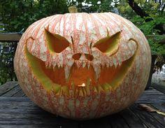 Heirloom Pumpkin 'One Too Many'