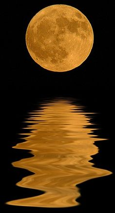 moon's reflection