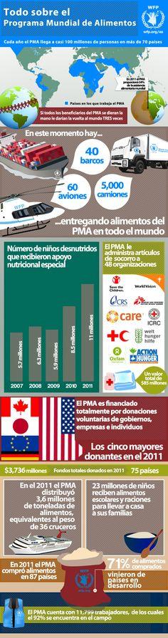 Infografía: Todo sobre el PMA (Programa Mundial de Alimentos)