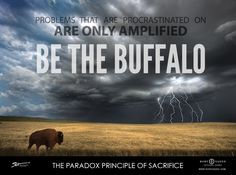 There is a great lesson about success and leadership from studying the way that buffalo and cows respond to storms. In Co, where I grew up, we are world famous for the Rocky Mountains. What a lot of people don't realize however is that the state is divided almost exactly in half. And toContinue Reading…