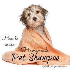 How to make homemade Pet Shampoo!