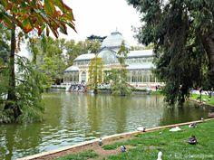 Le Palais de Cristal, Parc du Retiro, Madrid (Espagne)