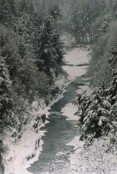 Vermont Winter, Snow Flower, Restaurant Branding, Snow And Ice, Winter Scenes, Winter Snow, Nascar, Winter Wonderland