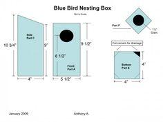 How To Build a Bluebird House: Bluebird Nest Box Plans