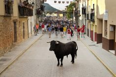 ALL ALONE: A bull stood in the middle of the street during a running of the bulls in Penafiel, Spain, Friday. (Daniel Ochoa de Olza/Associated Press)