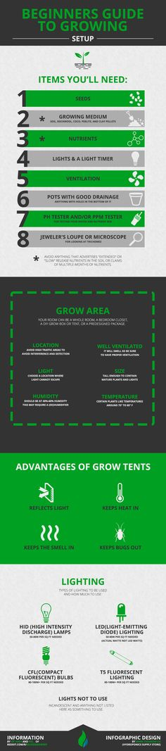 Beginners guide to growing plants in soil or hydroponics