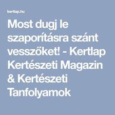 Most dugj le szaporításra szánt vesszőket! - Kertlap Kertészeti Magazin & Kertészeti Tanfolyamok