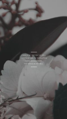 kaespo — lockscreens no. 308 - hurricane lyrics for the. Flowers Quotes Tumblr, Flower Quotes, Samsung Wallpapers, Cute Wallpapers, Phone Backgrounds, Wallpaper Backgrounds, Iphone Wallpaper, Hurricane Lyrics, Hamilton Wallpaper