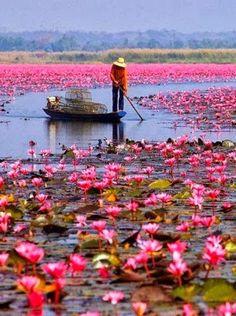 Lake Nong Harn, Thailand