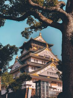 Explore Osaka, Japan's third largest city which is perfect for exploring cherry blossom season this spring. Aesthetic Japan, City Aesthetic, Japanese Aesthetic, Travel Aesthetic, Japan Beach, Japan Holidays, Castle Pictures, Osaka Castle, Japanese Castle