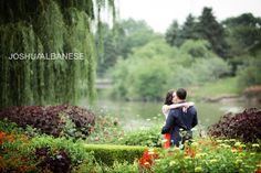 Chicago-photography-engagement-botanical-gardens.jpg (600×400)