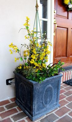 Pussy willow cage spring planter diy projects pinterest for Planter ideas for front of house