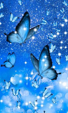 Images By Ashlyn Ramsahoi On Butterflay Wallpaper | Blue
