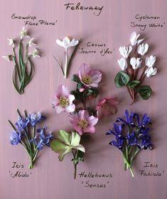 My Flower, Flower Art, London Garden, Birthday Month, Very Lovely, Garden Inspiration, Old World, Iris, Flower Arrangements