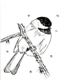 bird migration coloring pages - photo#38