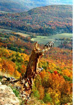 Ozarks Arkansas mountains