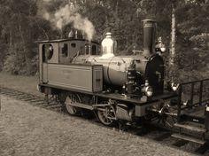 Onderweg naar Haaksbergen kruisen we met de Kikker en haar personentrein. Old Wagons, Mbs, Holland, Museum, Train, The Nederlands, The Netherlands, Netherlands, Museums